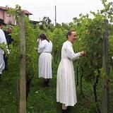 """Otvorenje """"Branja grojzdja"""" ove godine u vinogradu zagorske kulinarske zvijezde, pokojnog Slaveka Večerića"""