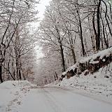 Neki davni snjegovi i Božići